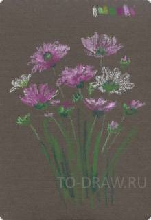 How to draw a pencil wildflowers in stages ? Lessons pastel.