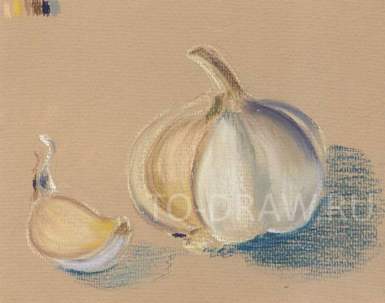 How to draw a garlic pencil stages? Step 3.