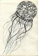 Drawing - jellyfish.